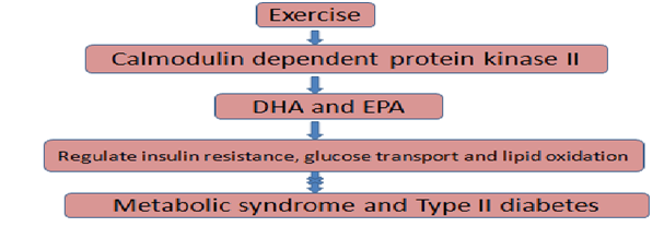 fatty acid metabolism control