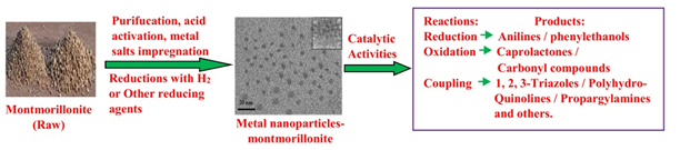montmorillonite nanocatalysts