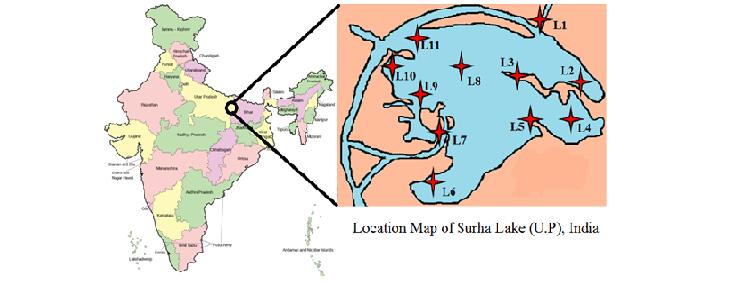 Surha lake