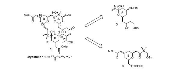 Bryostatin synthesis